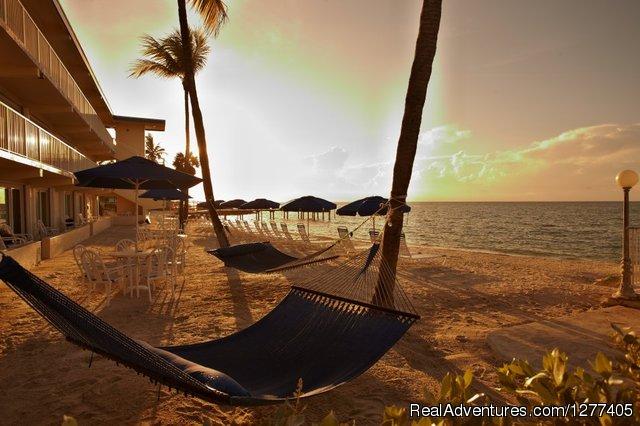 Glunz Ocean Beach Hotel Amp Resort Marathon Florida Hotels