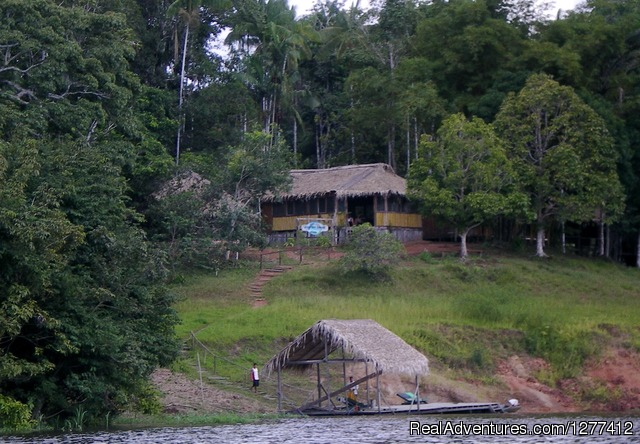 Dolphin Lodge - Amazon