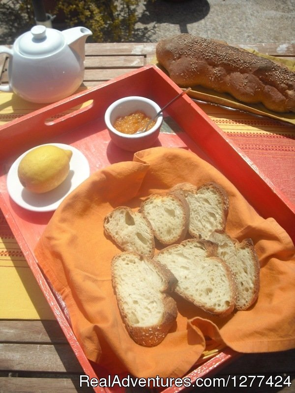 Il Gelsomino is a welcoming B&B in Paceco, a few km from airport of Trapani, Erice and the beautiful sea of S.Vito Lo Capo. The staff will offer a nice breakfast on terrace with local products, and you will spend a special holidays in Trapani.