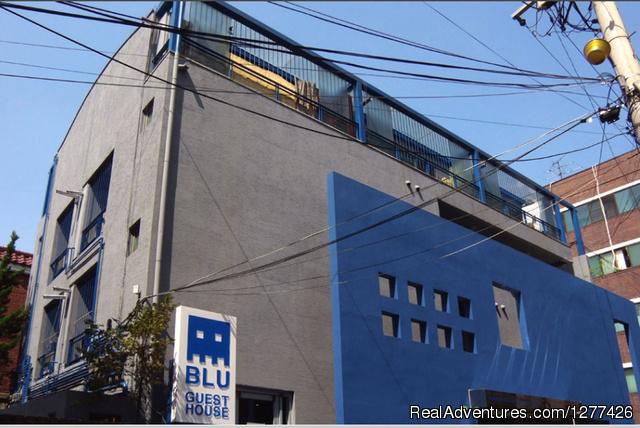 Blu Guesthouse?Seoul Korea View
