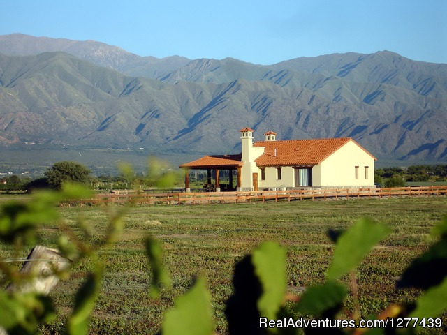 Exceptional location in Cafayate: