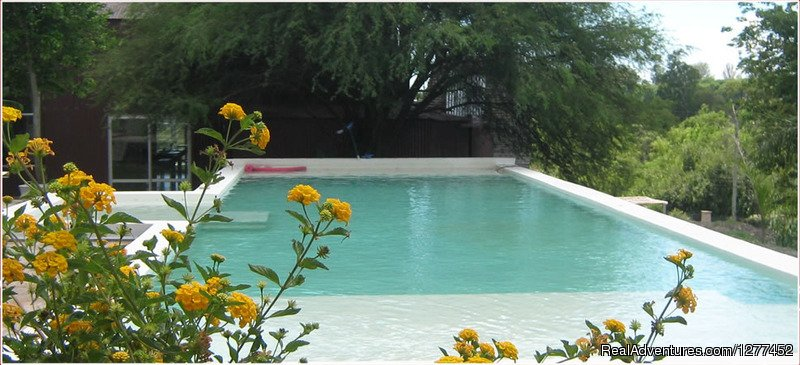 Swimming Pool - Entre Rios Lodge | Image #14/25 | Buenos Aires & Entre Rios Fishing Trips