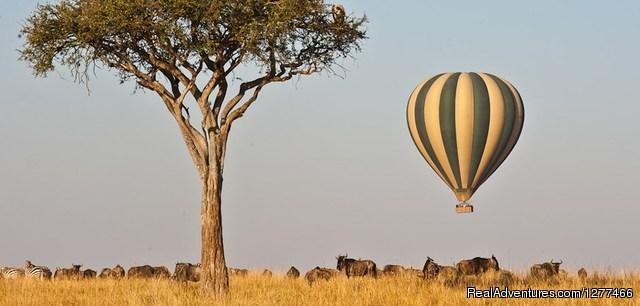 Terminal Tours Kenya Kenya Safaris | Tanzania Holidays | Masai Mara Camping | Ter