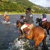 Horseback Riding in Poland