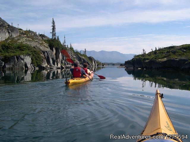 Packer Expeditions Skagway Alaska Hiking Amp Trekking