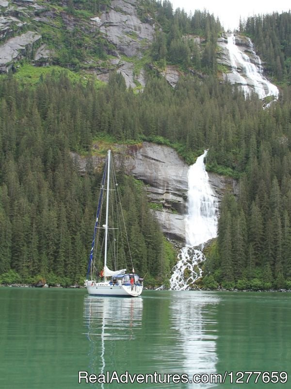 Come explore the spectacular fjords of Alaska. | Image #15/21 | Sound Sailing- Crewed Sailboat Charters in Alaska