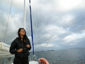Sound Sailing- Crewed Sailboat Charters in Alaska Sitka, Alaska Sailing & Yacht Charters