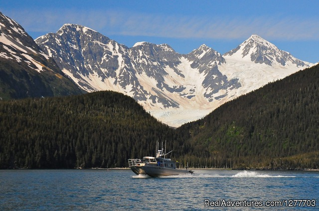 Where We Live - Prince William Sound Eco-Charters