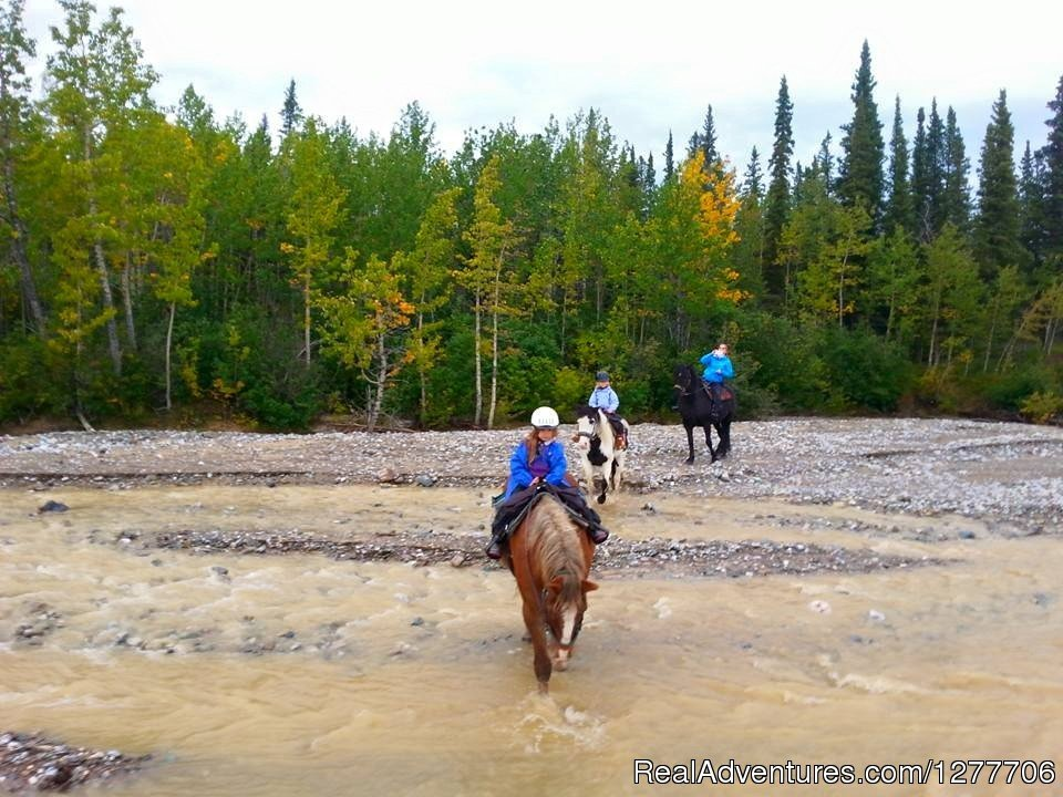 Alaskan trail ride - creek crossing | Image #5/9 | Denali Horseback Tours