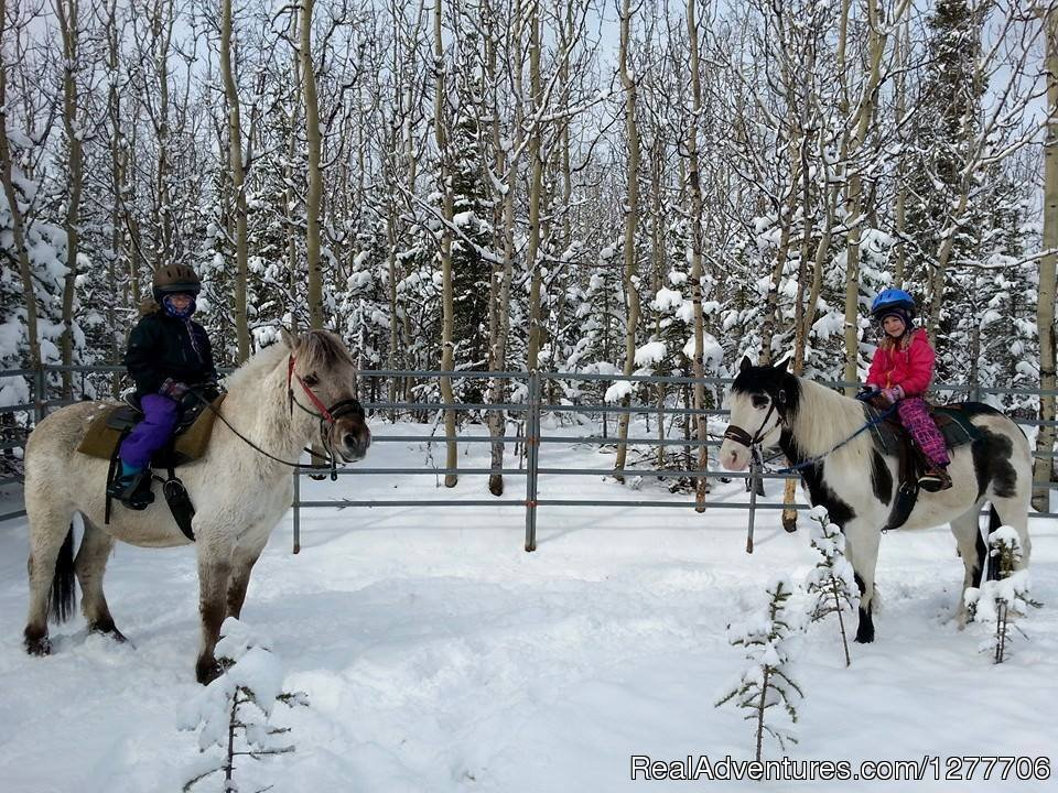 Winter riding in Alaska | Image #6/9 | Denali Horseback Tours