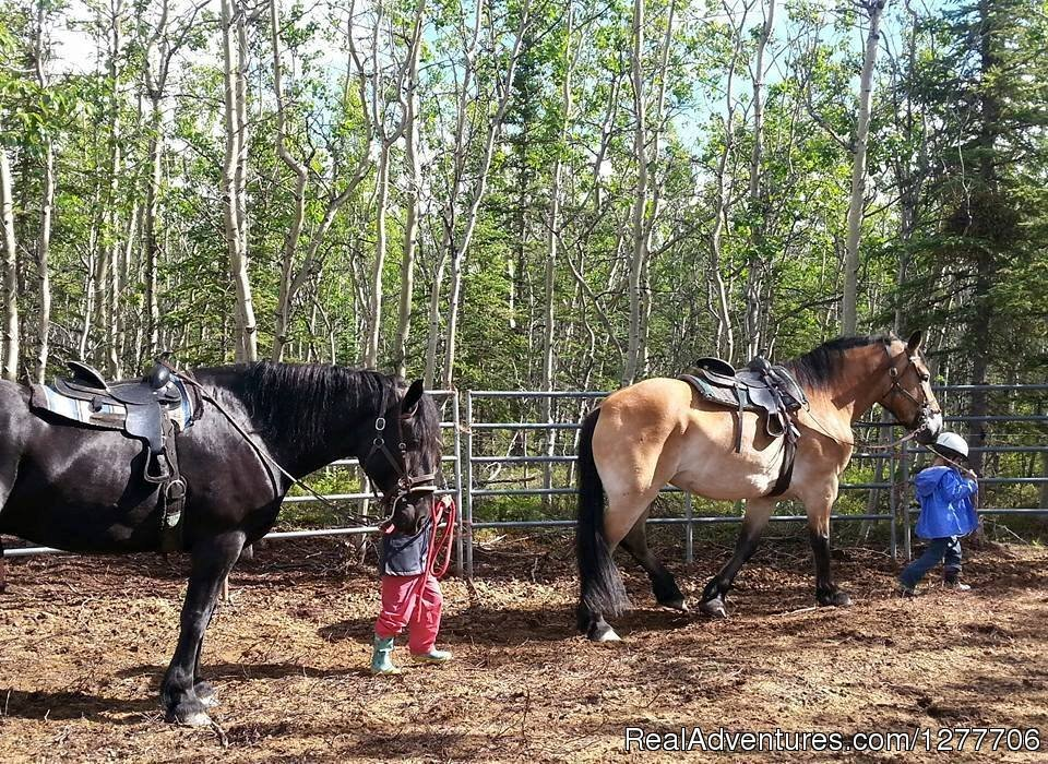 Riding lessons | Image #9/9 | Denali Horseback Tours