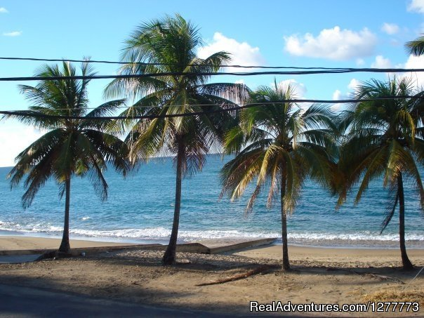 Situated on the beach, Hotel Colombus is in Aguada and area attractions include Aguadilla Mall, Crashboat Beach, and Punta Higuera Light House. Additional area attractions include Domes Beach. 