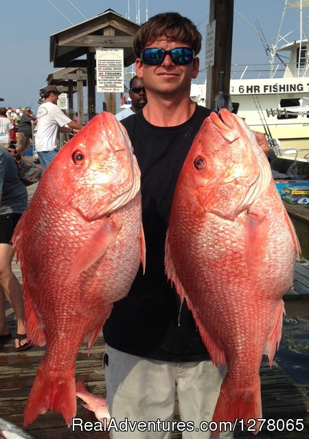 Capt Mike's Deep Sea Fishing Sow Snappers