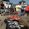 Capt Mike's Deep Sea Fishing Dauphin Island, Alabama Fishing Trips