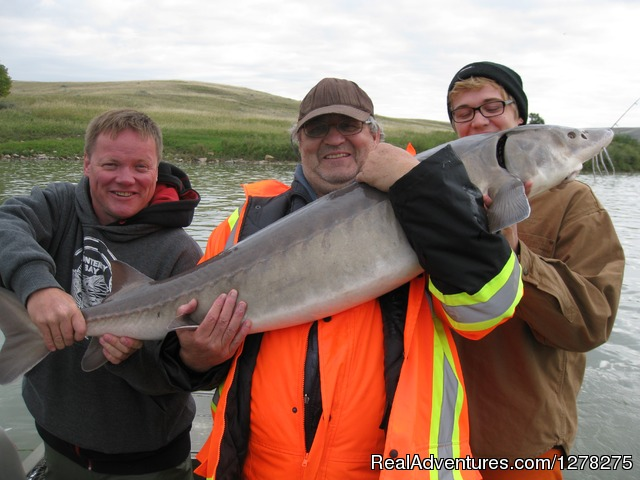an Alberta adventure - Alberta Sturgeon Fishing Trips