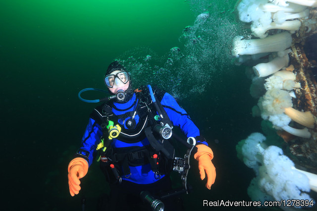 Alberta Adventure Divers: the Saskatchewan