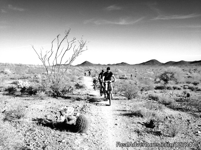 Journey Arizona Tours: Sonoran Desert Ebike Tour