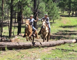 Sprucedale Guest Ranch Alpine, Arizona Dude Ranch
