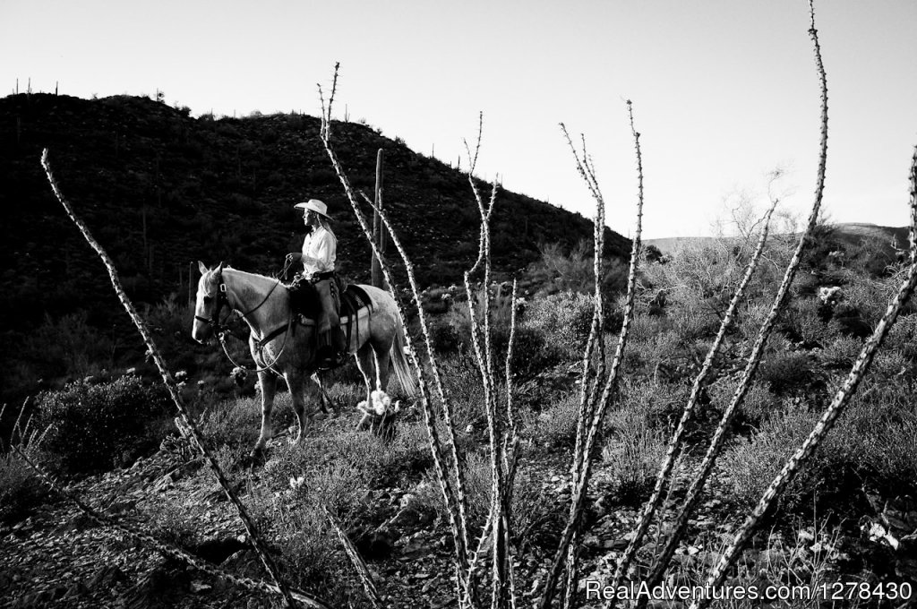 Image #4/5 | Cave Creek Trail Rides