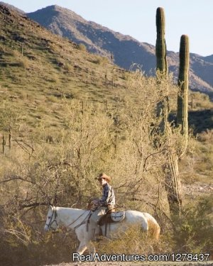 Corral West Adventures Goodyear, Arizona Horseback Riding