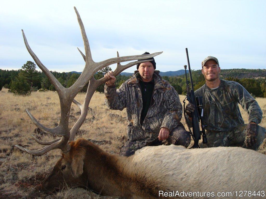 Arizona Elk Hunting Outfitters and Guides