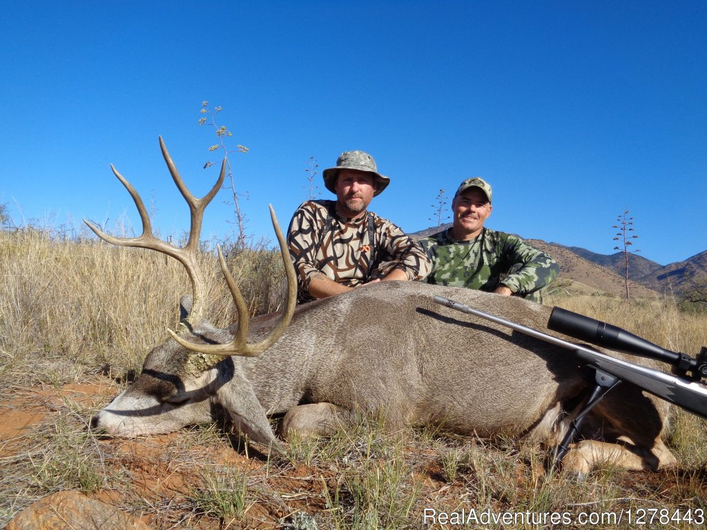 Desert Mule Deer Hunting | Image #3/11 | Arizona Guided Hunts