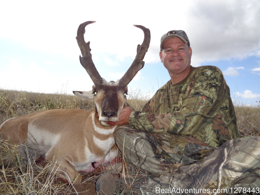 Arizona Pronghorn Antelope | Image #4/11 | Arizona Guided Hunts