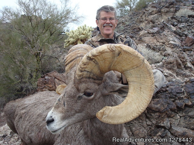Arizona Guided Hunts Hunting Guides Arizona