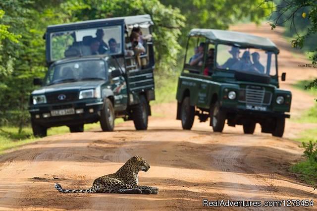 Srilanka Budget tours & travels