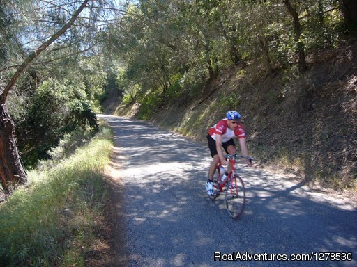 Santa Barbara Wine Country Cycling Tours: Epic Rides