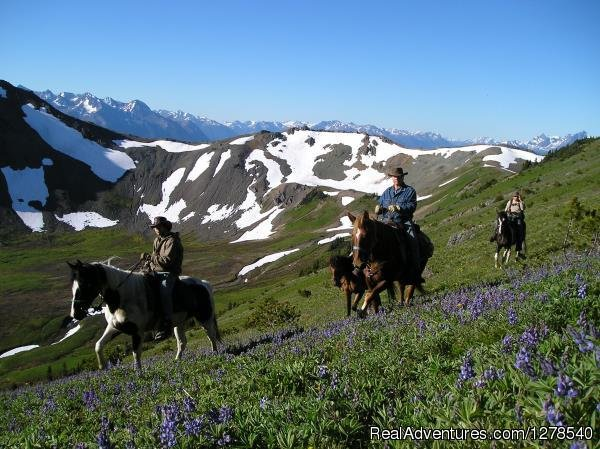 Pack trip | Image #3/11 | Chilcotin Holidays