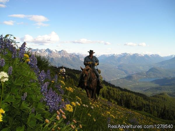 Pack trip | Image #1/11 | Gold Bridge, British Columbia  | Horseback Riding | Chilcotin Holidays