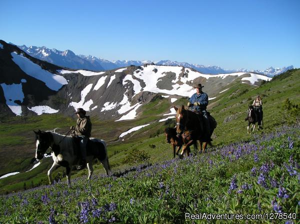 Pack trip - Chilcotin Holidays
