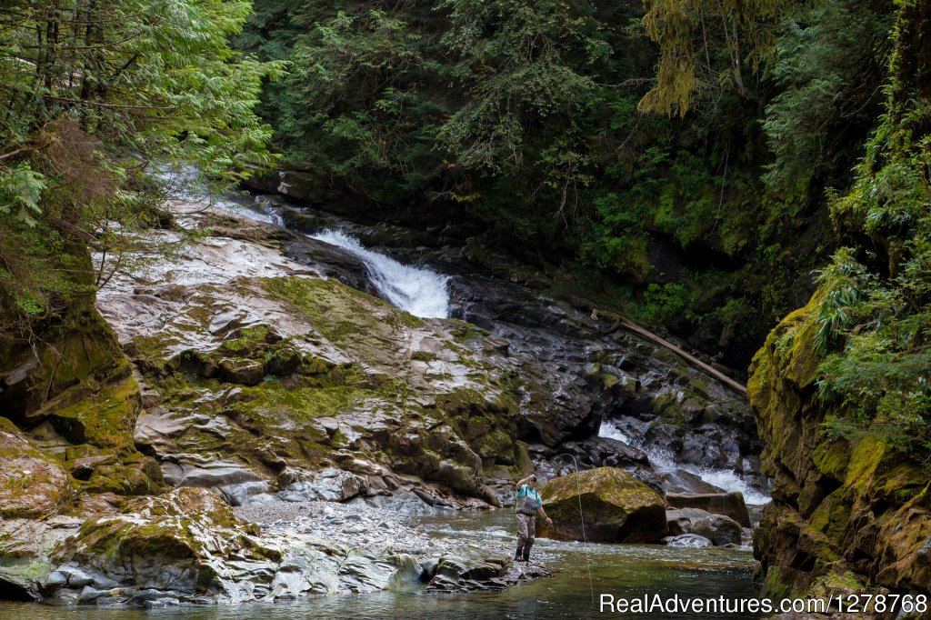 Fly-fishing a remote stream | Image #2/9 | Blackfish Lodge