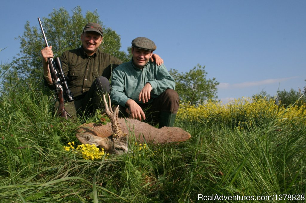 Roe deer stalking in Romania | Image #13/26 | Big and small game hunting in Romania