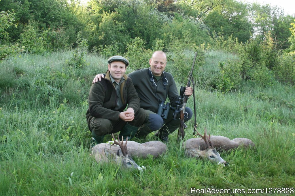 Roe deer stalking in Romania | Image #15/26 | Big and small game hunting in Romania