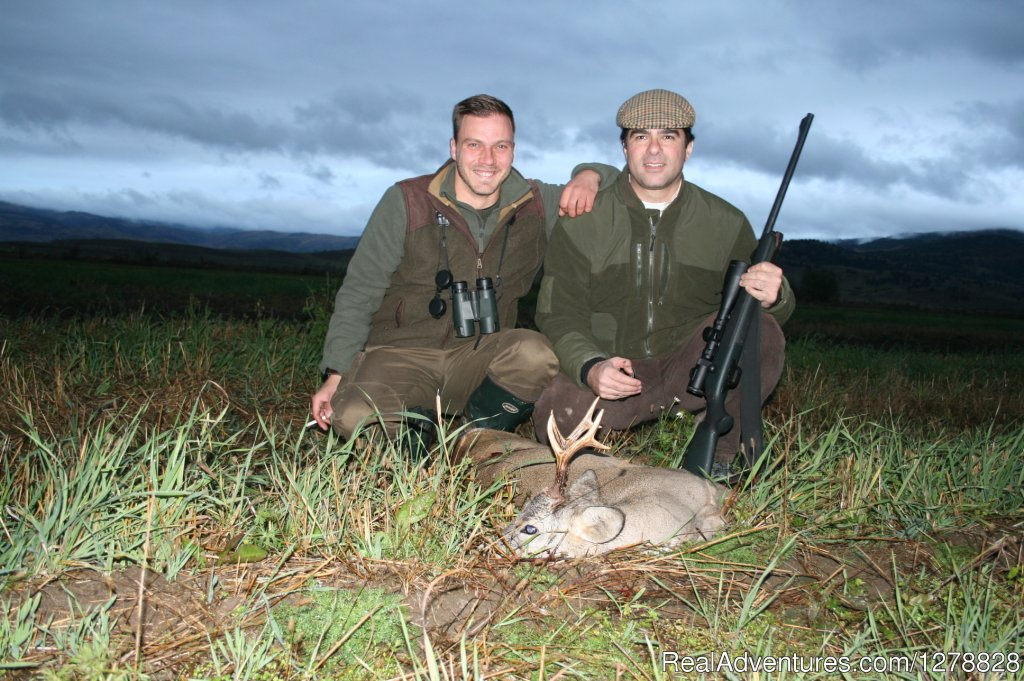 Roe deer hunting | Image #17/26 | Big and small game hunting in Romania