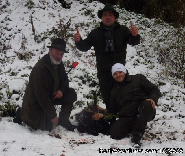 European red deer hunting - Big game hunting in Romania/B&D Carpathian hunting