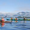 Majestic Ocean Kayaking