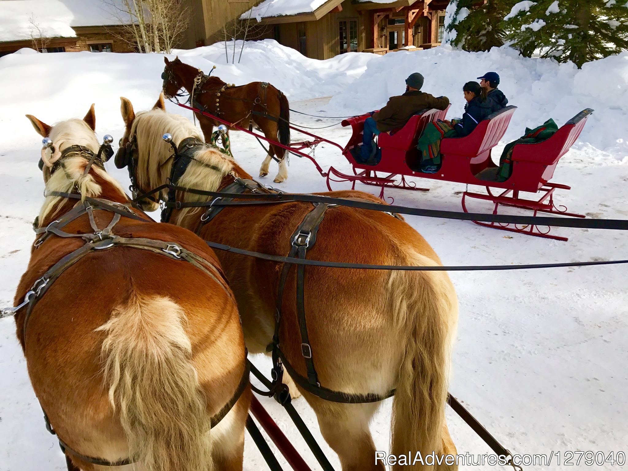 Sleigh rides, sking, tubing and more winter fun | Image #10/10 | Vista Verde Guest Ranch