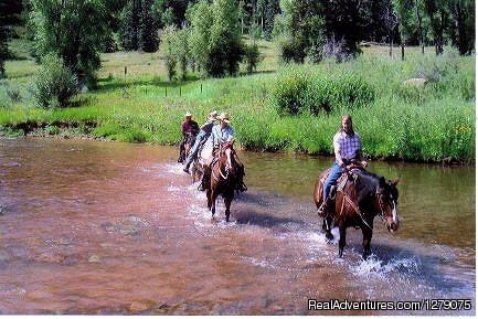 A Colorado Guest Ranch offering family oriented vacations, riverside cabins, high country horseback riding, fishing, and elk and mule deer hunts without the high price tag. We are a Non Structured Guest Ranch where YOU plan your own activities.