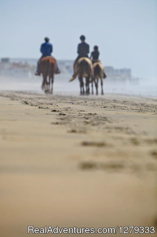 Ride to the Most Southwestern Point in Continental U.S. | Image #3/13 | Beach & Trail Rides by Horseback