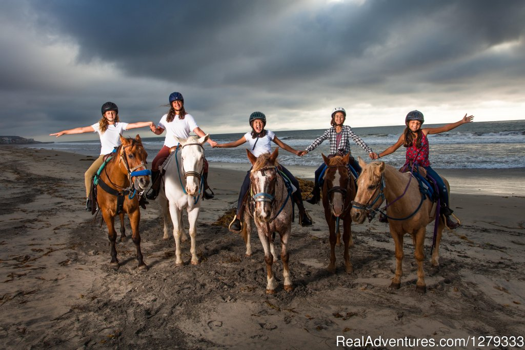 Experience of a Lifetime | Image #6/13 | Beach & Trail Rides by Horseback