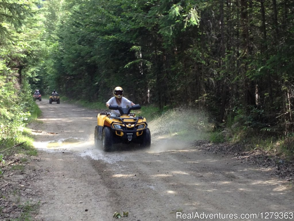 If your not getting dirty your not having fun | Image #3/5 | Alpine Country Rentals Ltd.