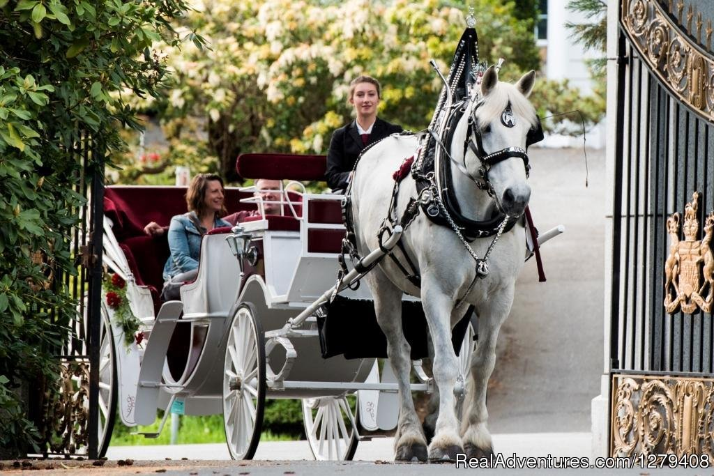 Create unforgettable memories in a private horse-drawn carriage as you experience the slow rhythm of horse's hooves with Tally-Ho Carriage Tours, Victoria's oldest sightseeing company (since 1903!).