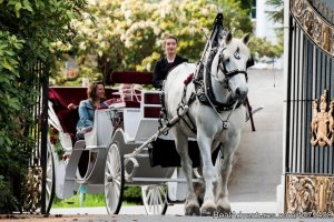 Private Horse-Drawn Carriage Tour Sight-Seeing Tours Victoria, British Columbia