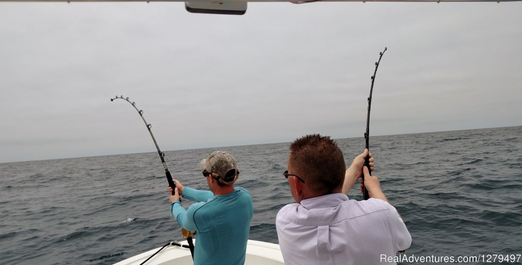 Double hook up | Image #3/10 | Shark fishing adventures