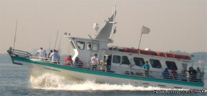 Island Current Bronx, New York Fishing Trips