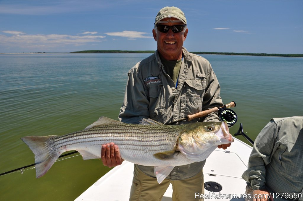 Fly fishing the east end of Long Island, NY