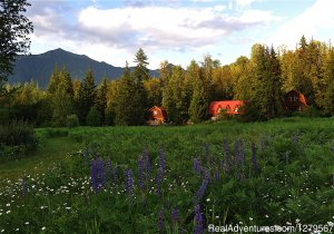 Blue Sky Resort log-cottages , lake view Vacation Rentals Silverton, British Columbia